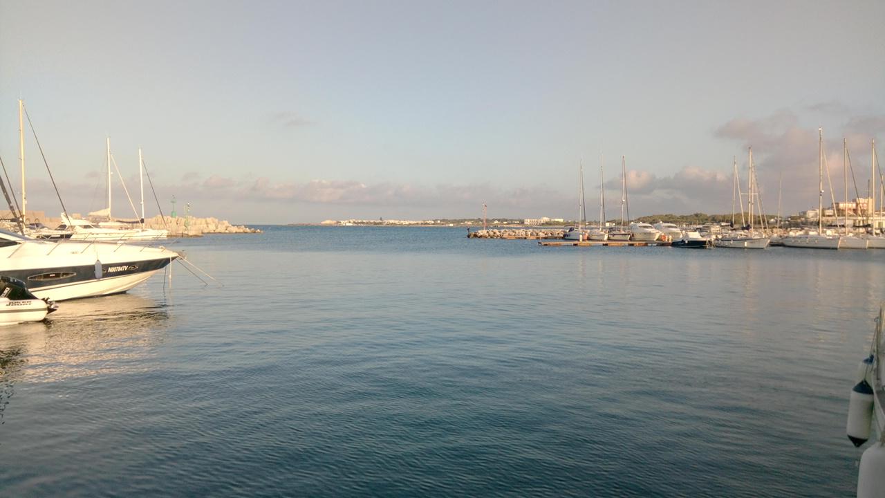 marina-san-foca