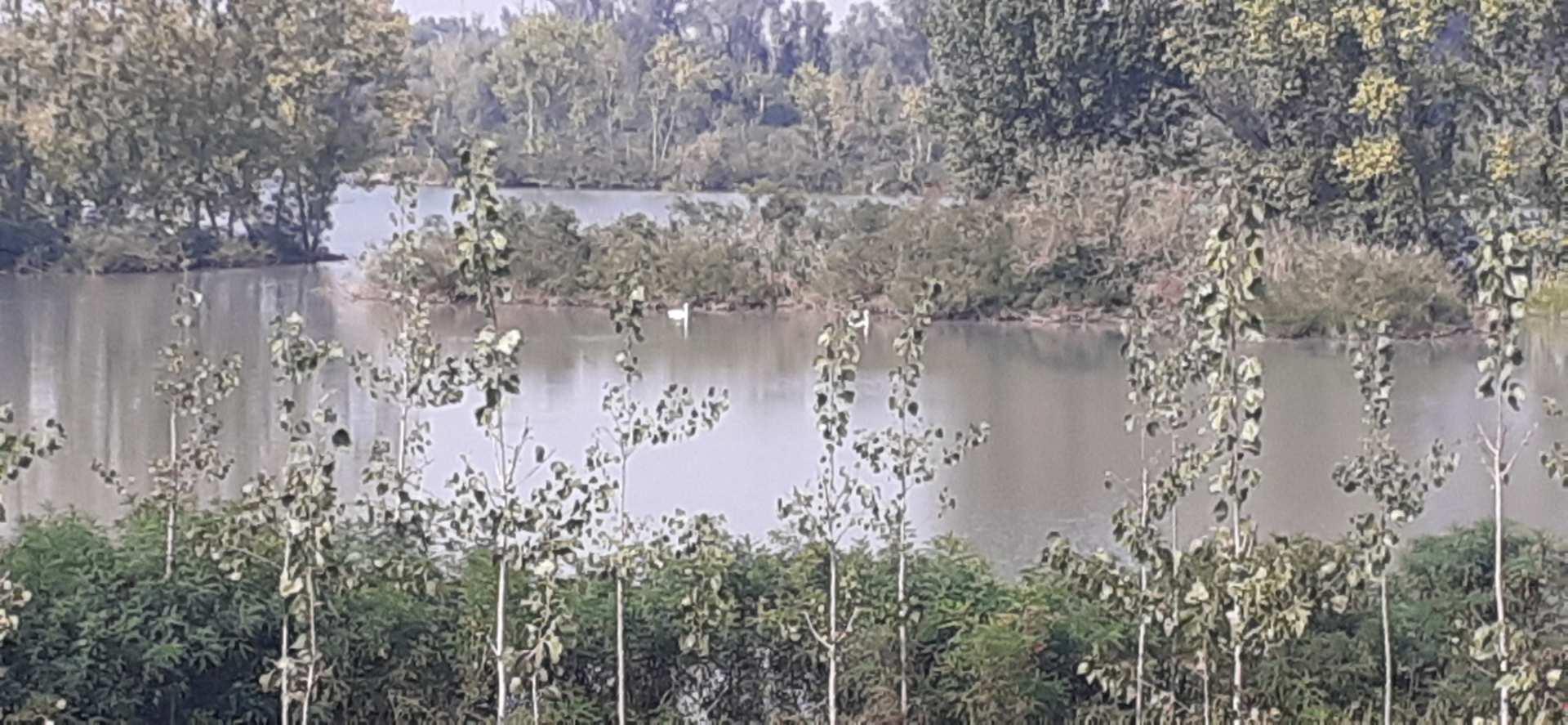 lago Vallazza, Mantova