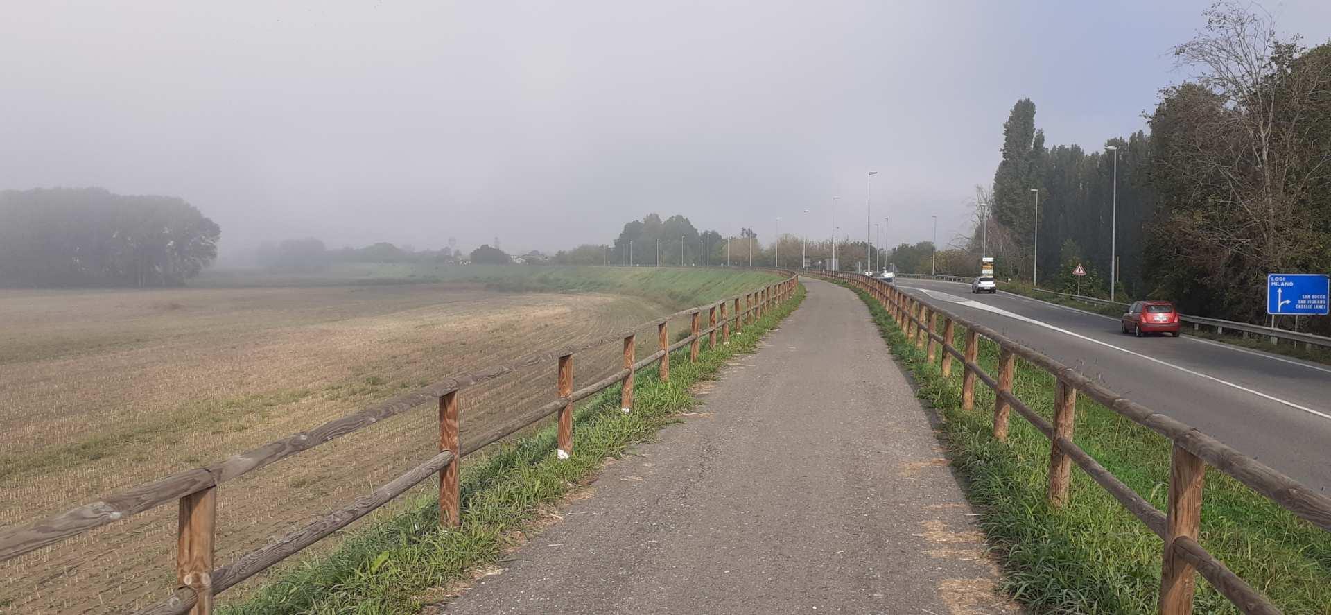 Il Po a Piacenza