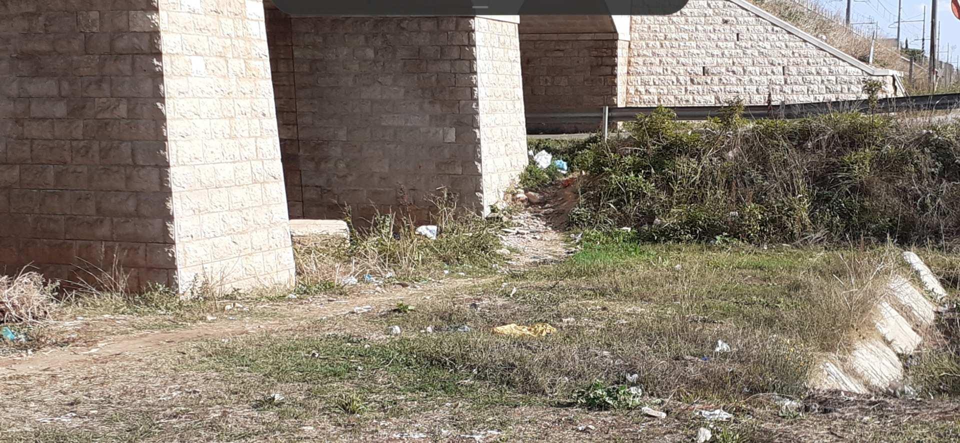 Balice, Bari